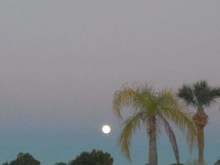 Beautiful evening with a wonderful moon rising