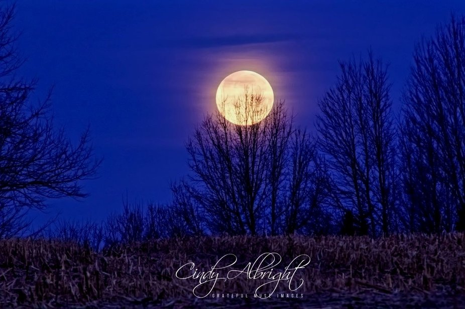 This photo was taken the morning of the Super Snow Moon in Feb. 2019.