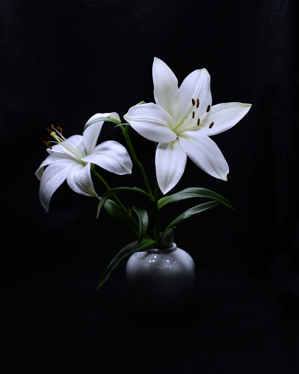 Two white and a vase