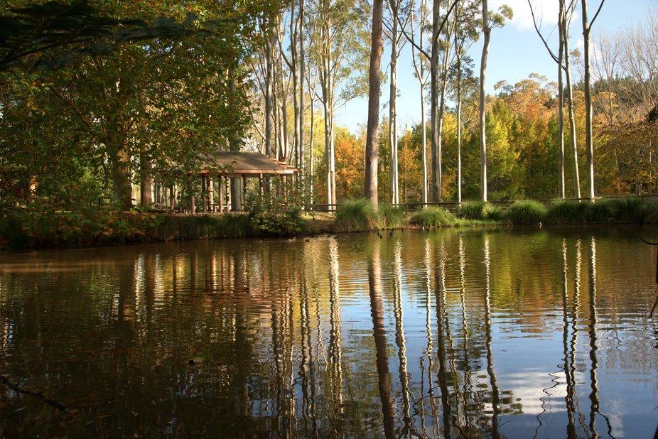A hidden gem on an autumn afternoon,