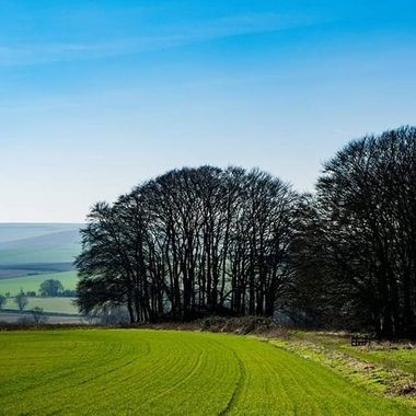 View near Avebury, Wilts, UK.