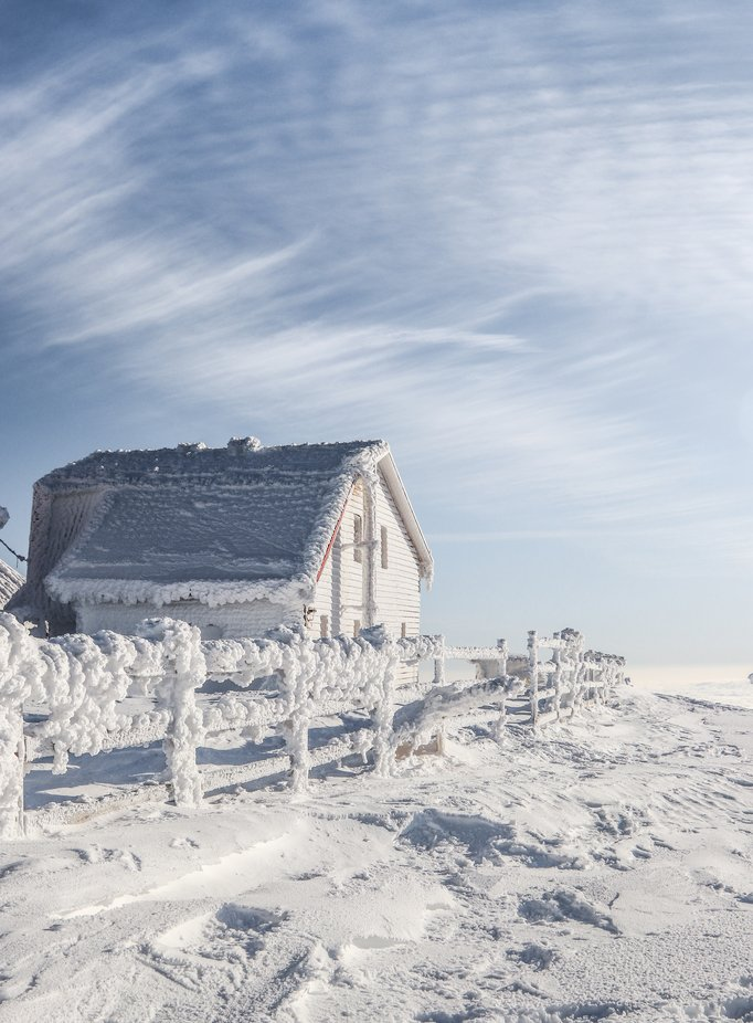 Frozen by sergiuwewe - We Love The Winter Photo Contest