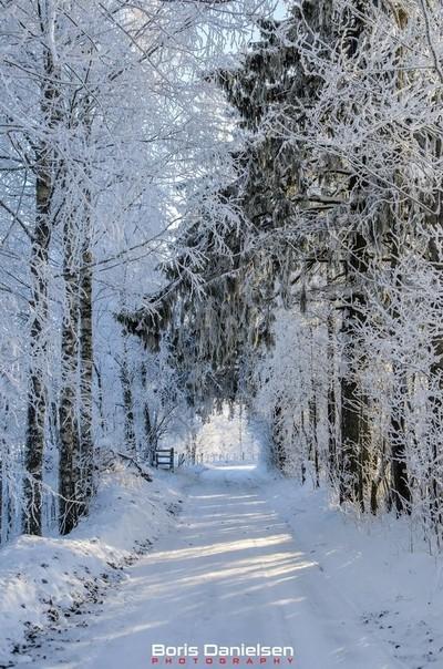Small Norwegian road in winter.