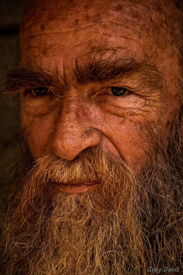 Life by GregDavisFlorida - Image Of The Month Photo Contest Vol 42