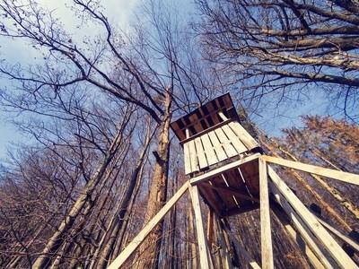 Steigerwald Impressions III - Hunter's home