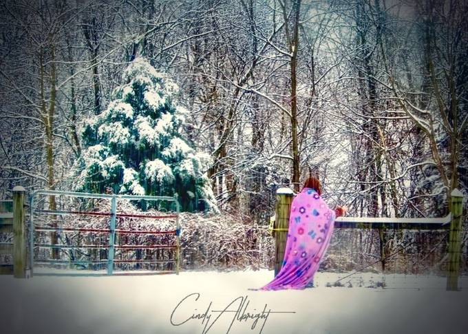 "This was a magical day, much like a fairytale.  Big white fluffy flakes, and my Granddaughter running around in her blanket ""cape"", lost in her imaginary kingdom"