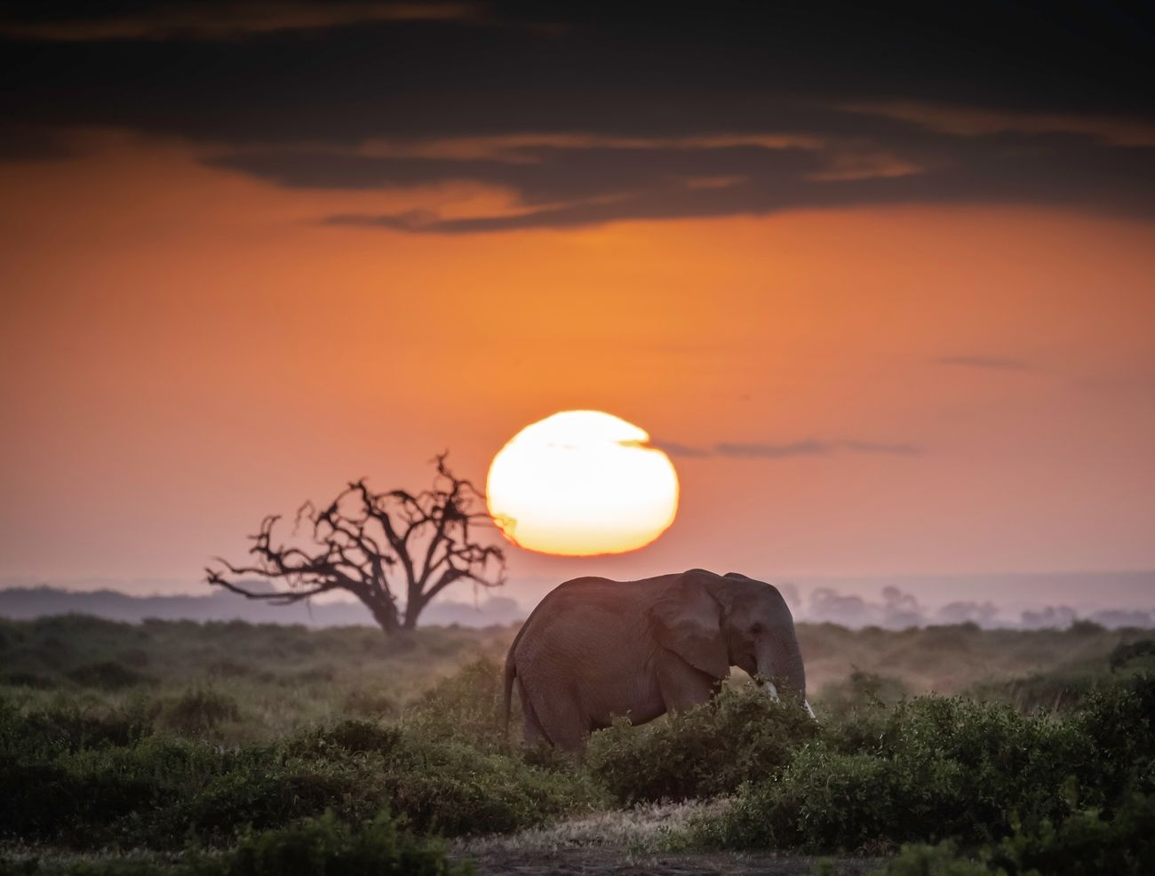 10+ Travel Photographers Share What Is Africa