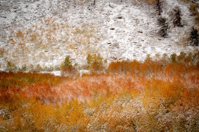 Lamoille Fall Snow Fall