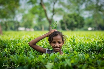 Smiling Joy With Tea Plants