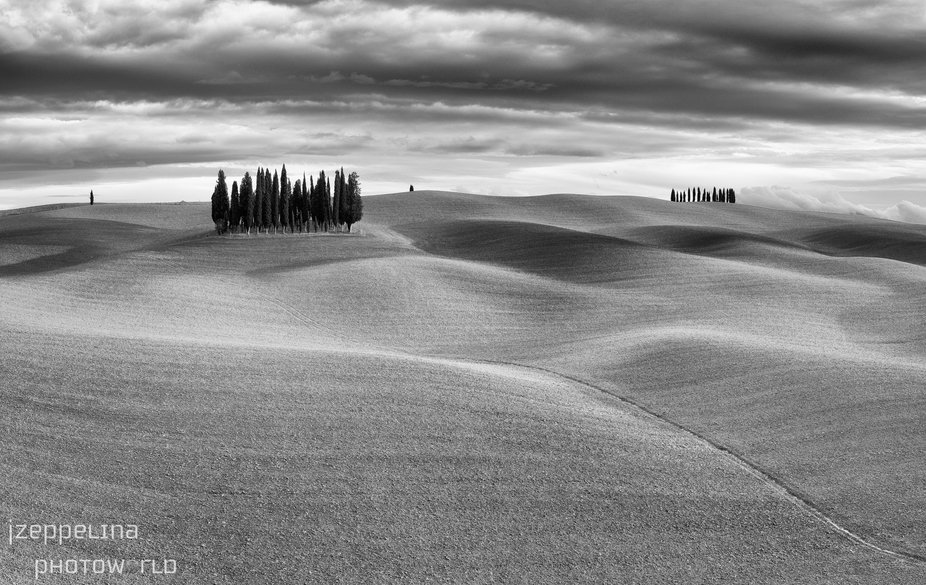 The way these Tuscany hills with groups of cypress trees are changing with the appearance of the ...