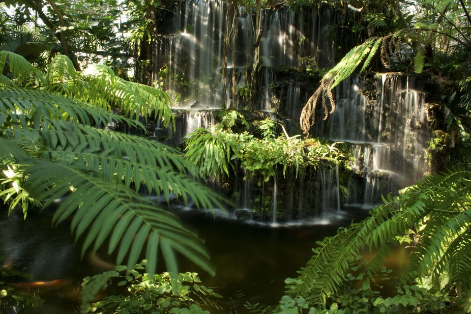 IMG_3173_Jungle waterfall