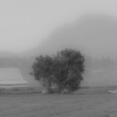 IMG_2659_Foggy morning in LaConner_v_B&W
