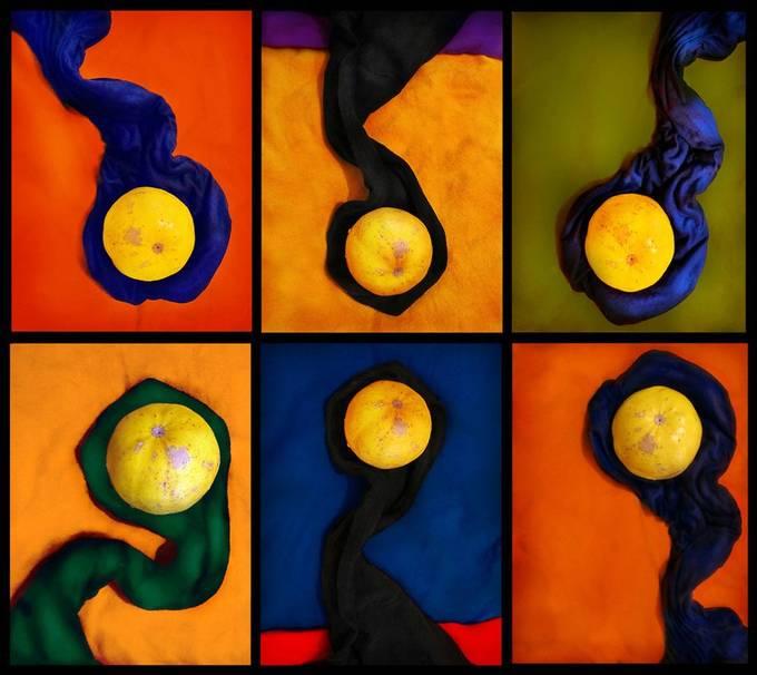Colorforms by Stanislav_Sitnikov - Colorful Macro Photo Contest