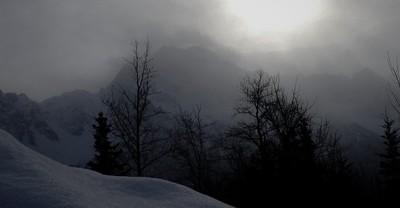 Pioneer in fog