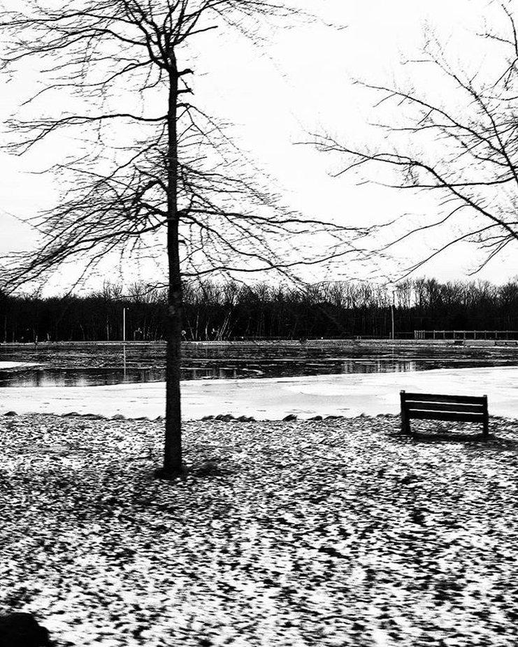 #Snow #cold #Winter #Poconos #Life #Solitude #blackandwhite #Original #Photography #Peace #Balanc...
