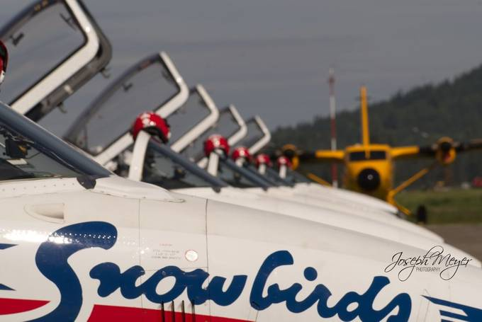 Snowbirds 11 by tigercat - Aircrafts Photo Contest