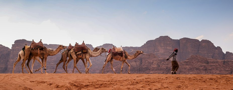 Another image from my visit to Kingdom of Jordan. This was taken in the desert of Wadi Rum were t...