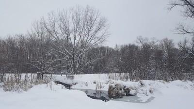 Snowy landing at Eagle Lake