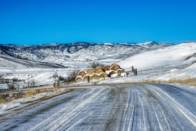 Winter Hay Bales