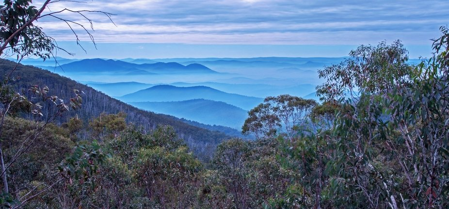 Took this in the Victorian High Country. Bush fires have all but been extinguish.