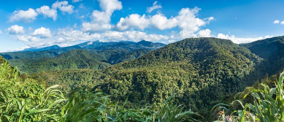 This is the magnificent Braulio Carrillo National Park. You can also see the Turrialba volcano in...