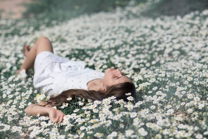 flowers by kerendanielikasner