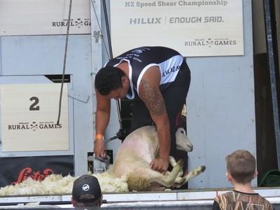 Shearing to Win