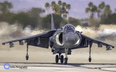 """""""Harrier Touch Down"""""""