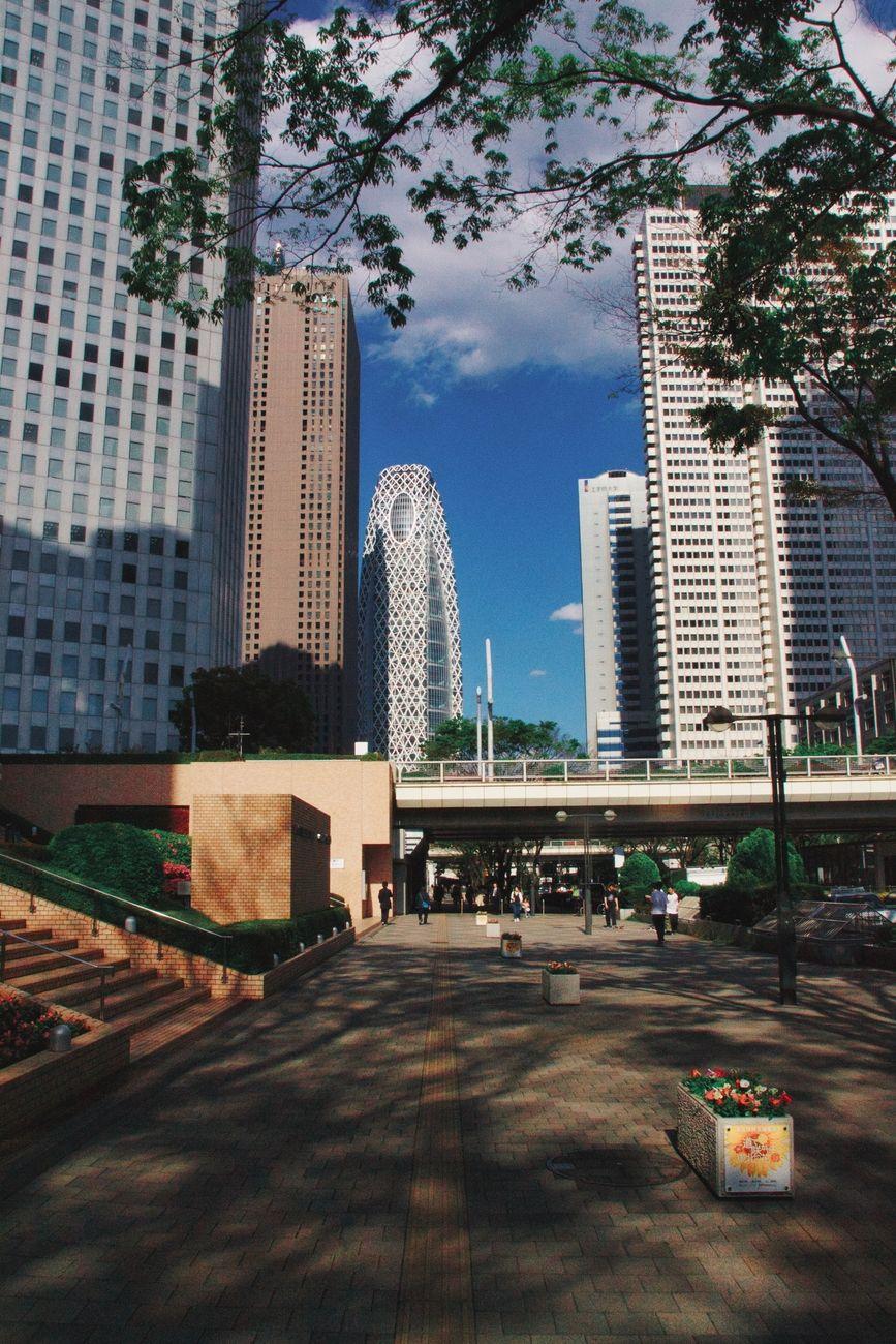 A walking path in Shinjuku with a view.
