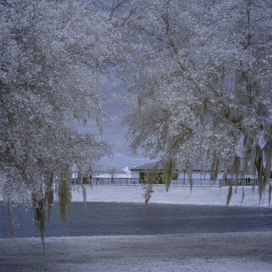 Southern Forida in winter - Infrared
