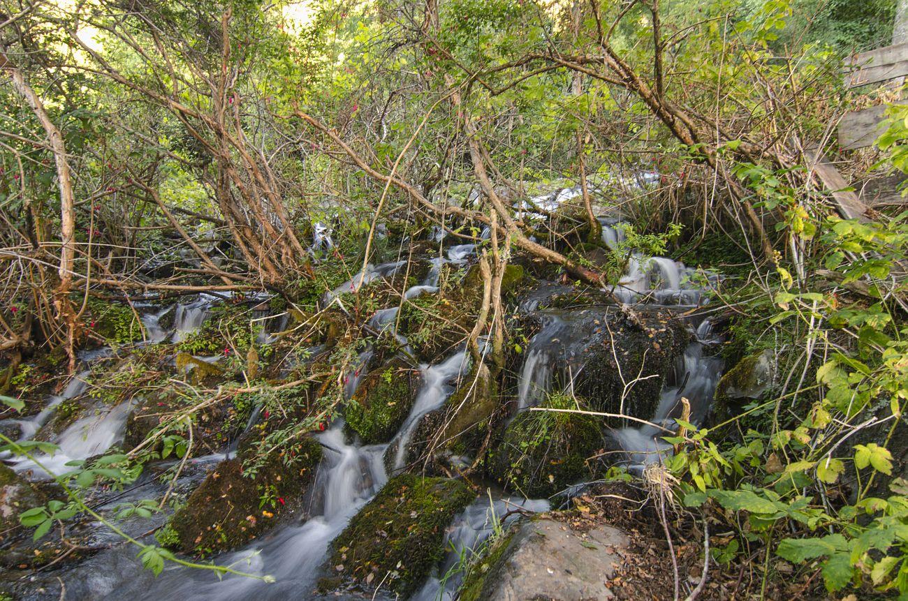 Cascada en Liquiñe