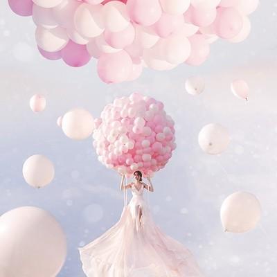 Fly Into Dreams