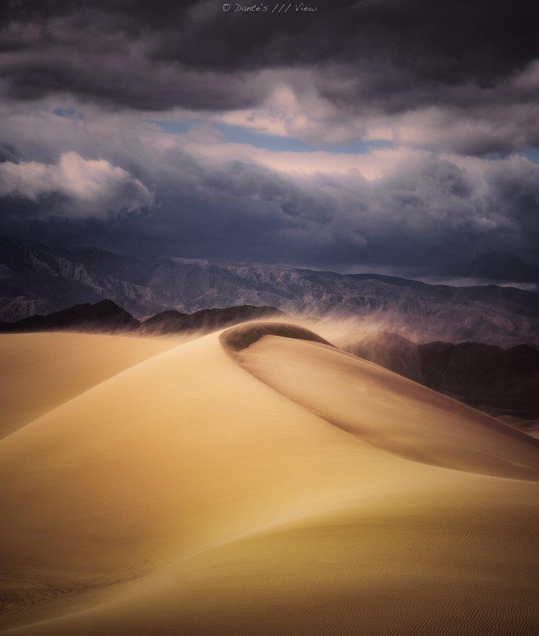 G O L D E N   D U S T  by Dantes_View - Wind In Nature Photo Contest