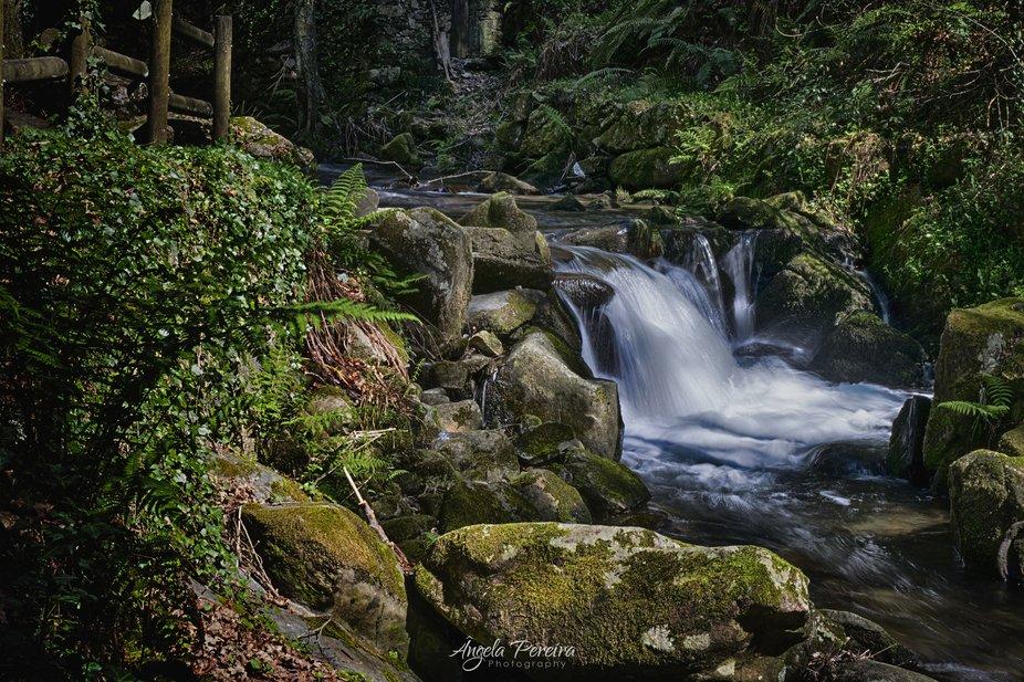 Near Cascata da Cabreia - Sever de Vouga