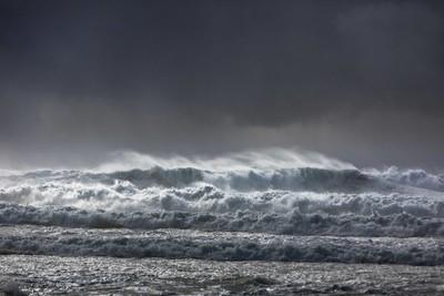 Shelly Beach Oma_1242