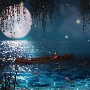 {Jax} Mystical Night