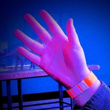 The Hand of an Artist