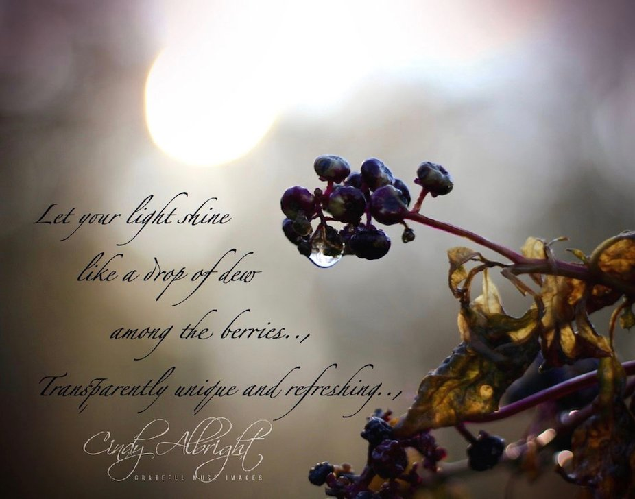 Let your light shine like a drop of dew among the berries...transparently unique and refreshing!
