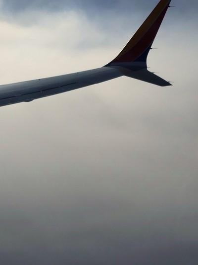 Clouded Flight