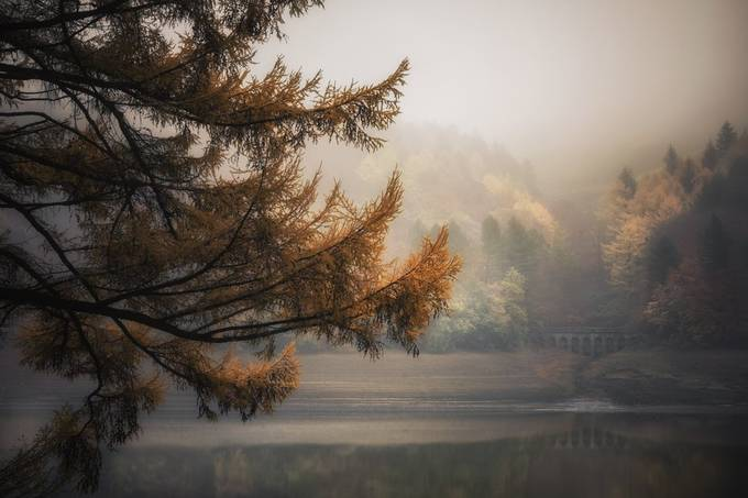 Autumn In Ladybower by CPF_Photography - Social Exposure Photo Contest Vol 21
