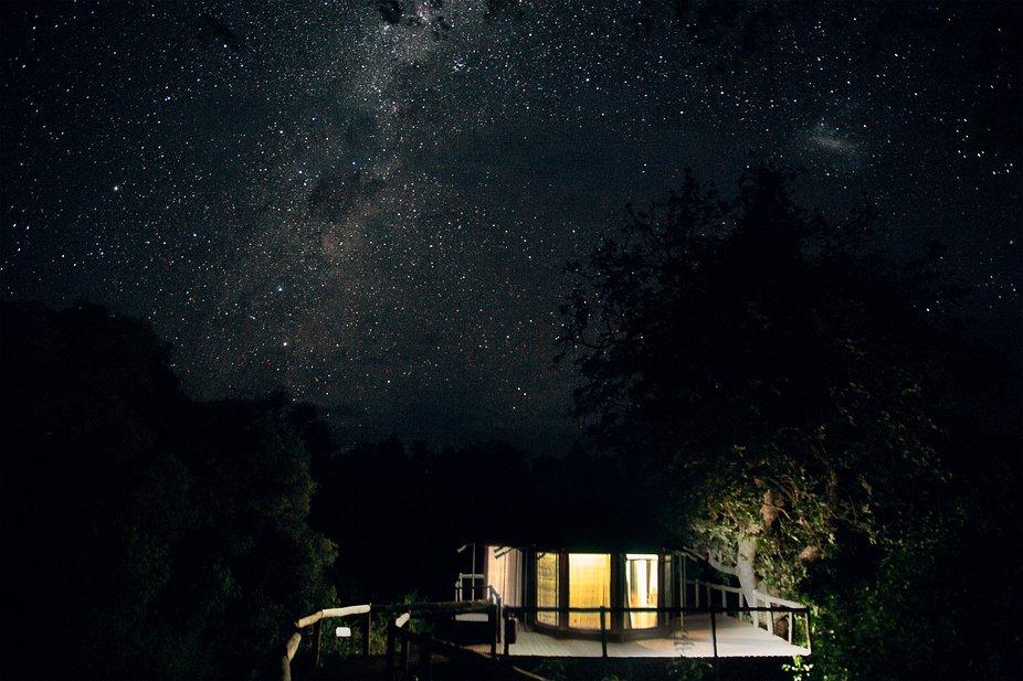 starry nights