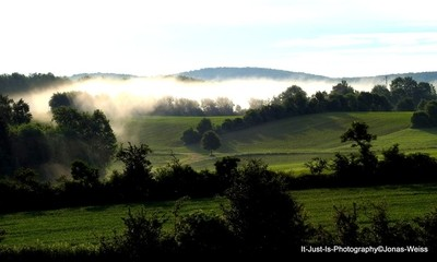 Beautiful Mist in the Morning
