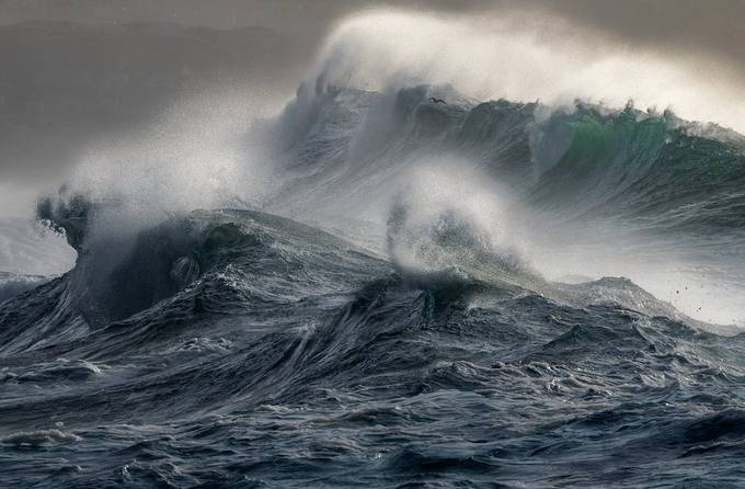 Wild Seas  by WildSeascapes - Covers Photo Contest Volume 3