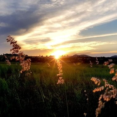 Sun Set Johannesburg