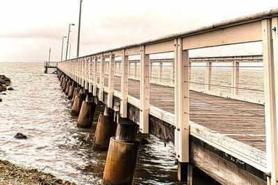 Pier at Wellington