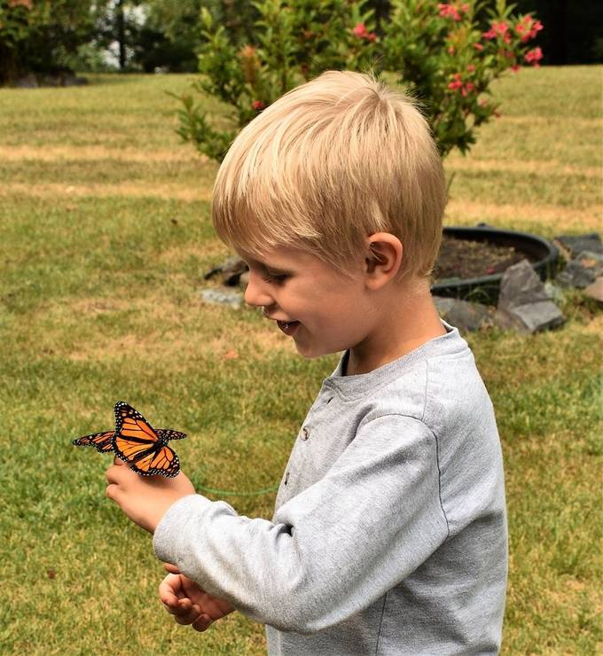 Butterfly release for Hospice when 3 landed on the young mans hand
