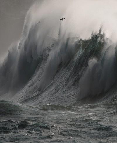 Wave Rage