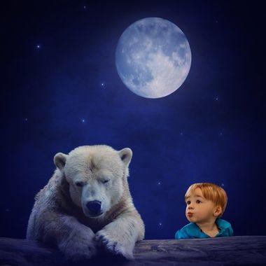 {Jax} Good Night Bear