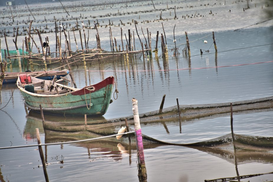 A small boat on an oyster farm near Halong Bay, Viet Nam