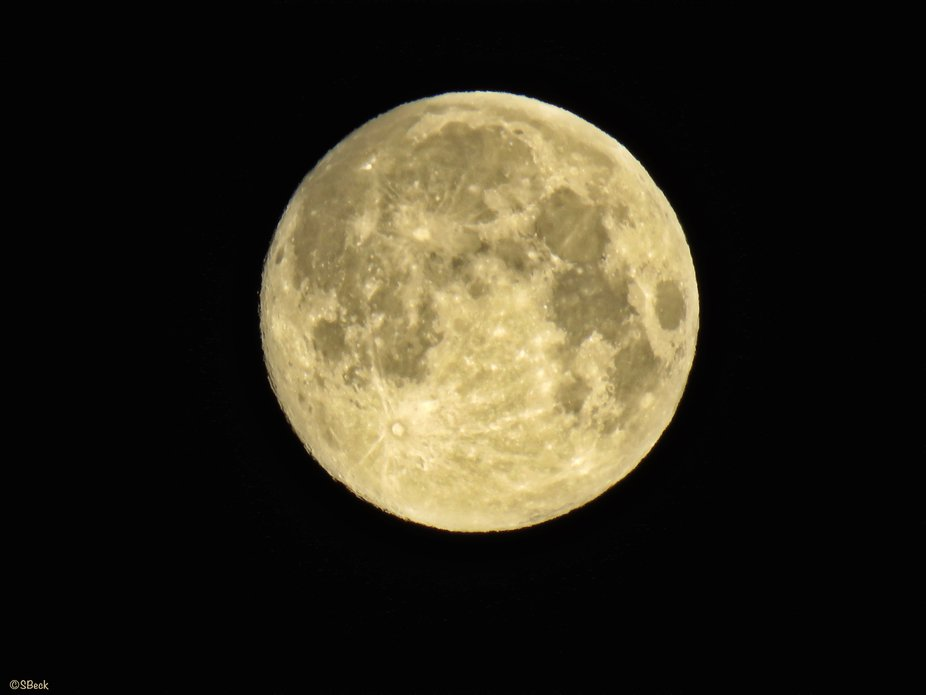 I was so excited with the Super Moon a few days ago...since I have my small Cannon SX60 as a back...